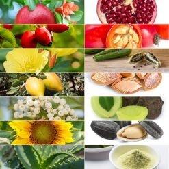 Vegan-Skin-Care-Garden-Las-Vegas-Face-Oil-Acne-Skin-Pomegranate-Rosehip-Evening-Primrose-Avocado-Tamanu-Argan-Sunflower-Aloe