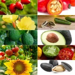Vegan-Skin-Care-Garden-Las-Vegas-Face-Oil-Mature-Skin-Rosehip-Evening-Primrose-Avocado-Tomato-Sunflower